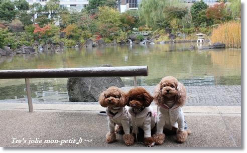 20121110-31東京