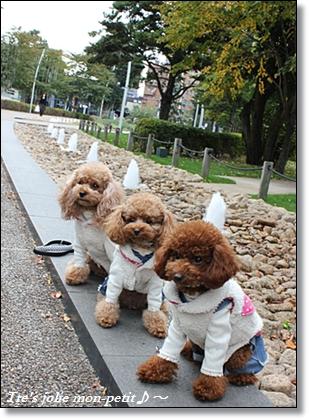 20121110-32東京