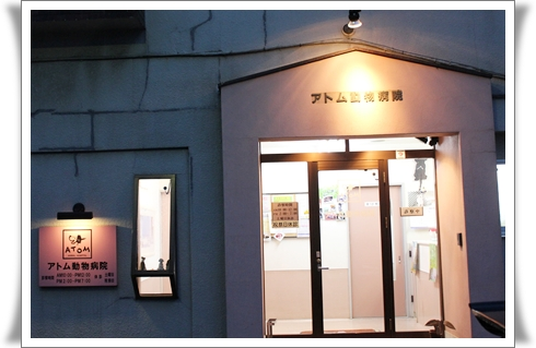 20121110-38東京