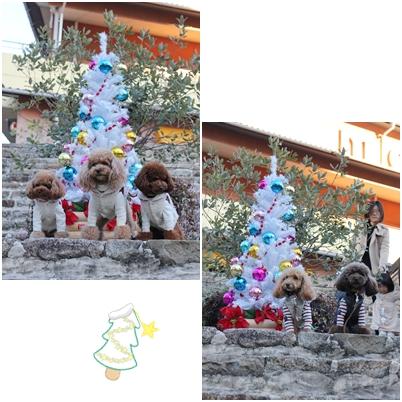 20121125-19.jpg