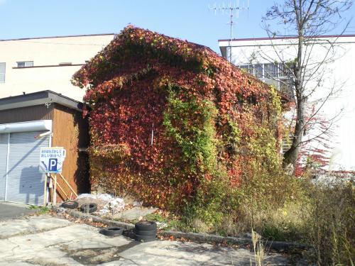 新幹線を活かして 新しい飯山へ!(26.11.10)
