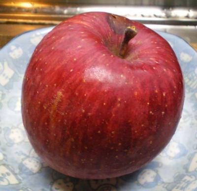 傷んだリンゴ(26.11.24)