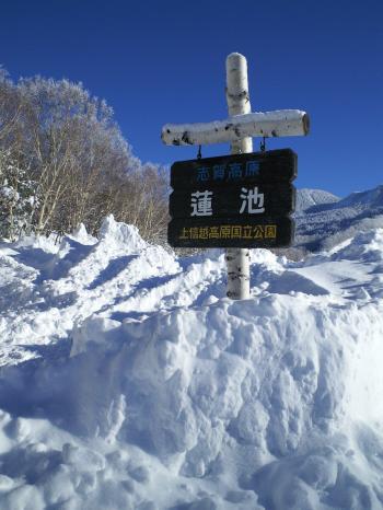 蓮池は雪の中(26.12.19)