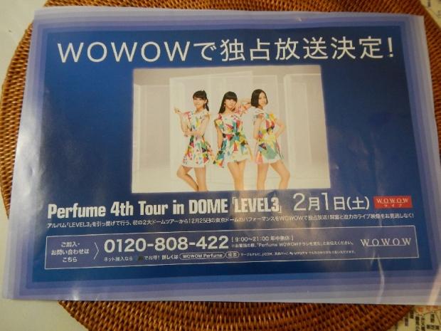 Perfume東京ドーム (3)