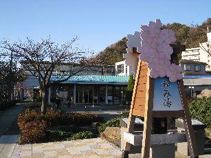 伊豆河津ツアー (19)