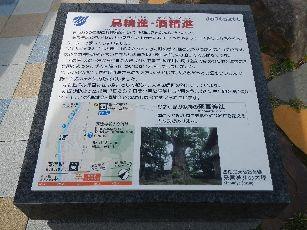 伊豆河津温泉旅 (54)