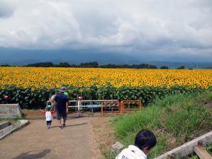 2012_08_26_03_.jpg