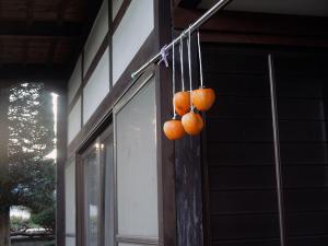2012_11_08_04_.jpg