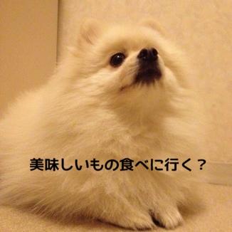 fc2blog_201312132132052ee.jpg