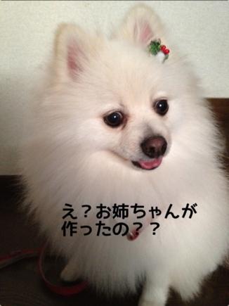 fc2blog_20131224212038ad9.jpg