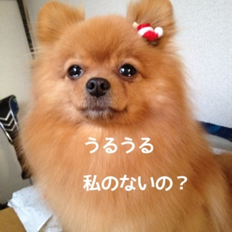 fc2blog_201312242124026cc.jpg
