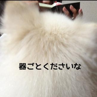 fc2blog_20131229182418765.jpg