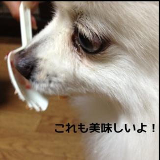 fc2blog_20131229182450e0a.jpg