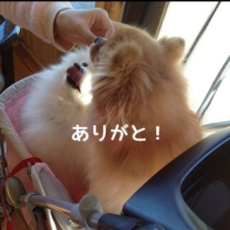 fc2blog_20131230211509a4d.jpg