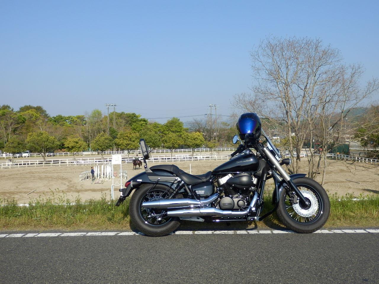 P5050001.jpg