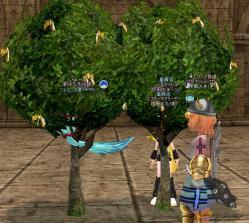 願い事の木