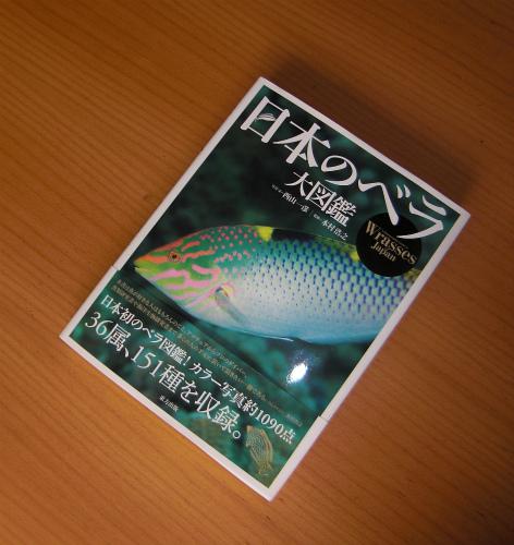 日本のベラ大図鑑4800
