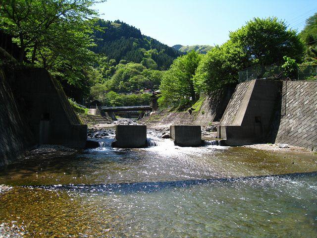 2012.5.19下仁田釣行 (62)