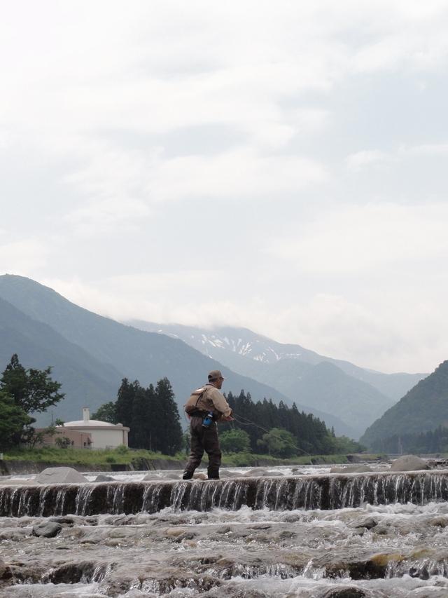 新潟2012.6.3 (24)