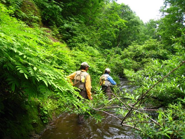 2012.7.16 長野県釣行 (42)
