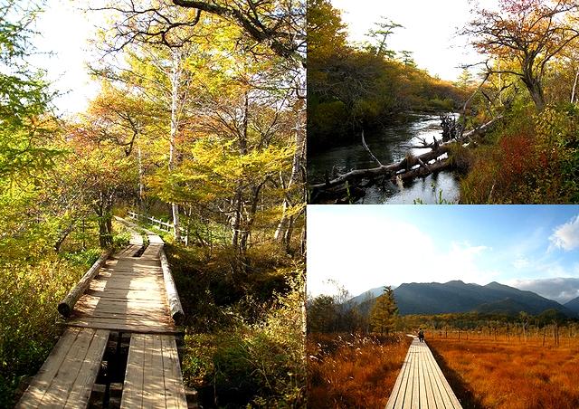 2012.10.13男体山 (121)