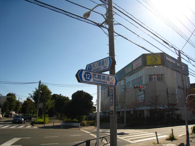 2012.11.3吉祥寺 (2)