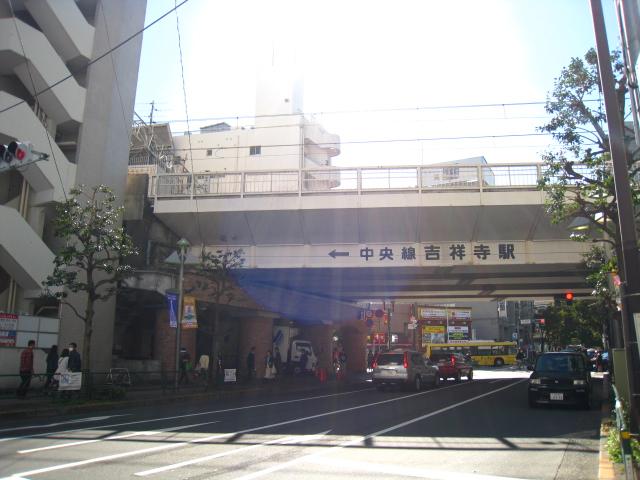 2012.11.3吉祥寺 (6)