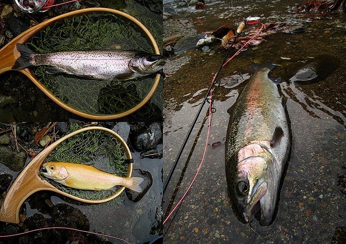 2012.11.23箒川と白河FS (87)