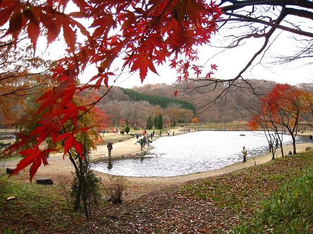 2012.11.23箒川と白河FS