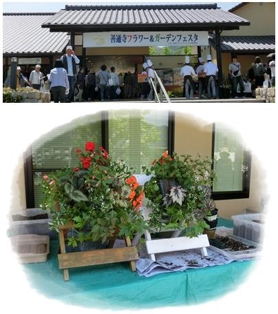 240519善通寺フラワー&ガーデンフェスタ1&2