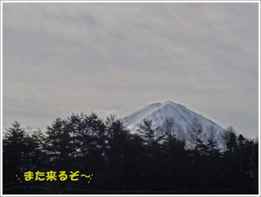 20130106-13.jpg