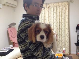 fc2blog_20121124003823b53.jpg