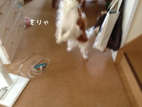fc2blog_20130529222729eaf.jpg
