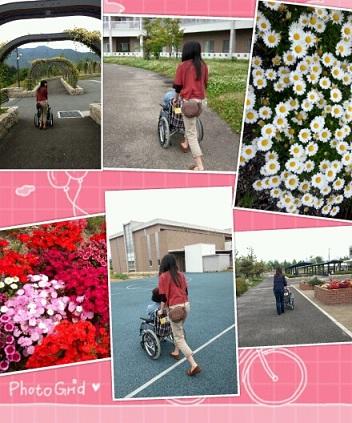 PhotoGrid_1337484019365.jpg