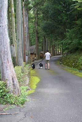 0804-2鷲敷林間キャンプ村