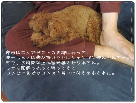 2012 05 20_8906