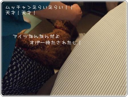 2012 06 23_0046