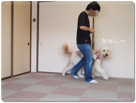 2012 07 10_0511