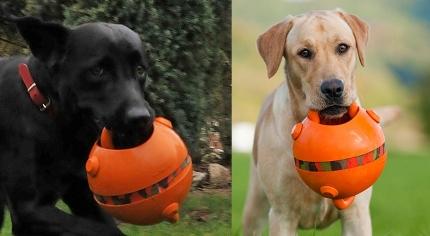 犬用おもちゃ・キングボール
