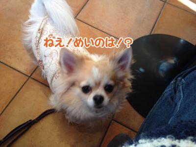 4_convert_20140130113814.jpg
