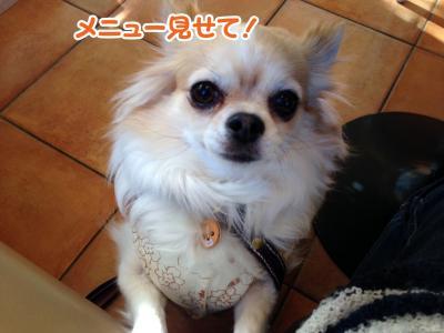 5_convert_20140130113830.jpg