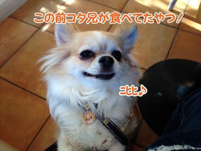 8_convert_20140130113917.jpg