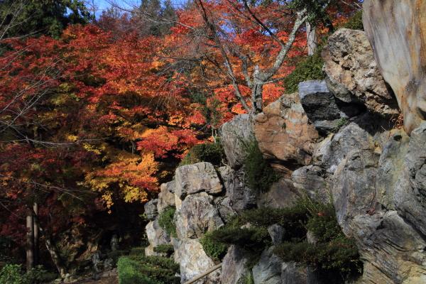 2012-11-25_0823.jpg