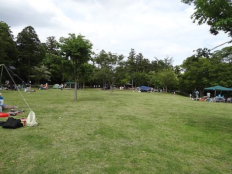 nrt015.jpg