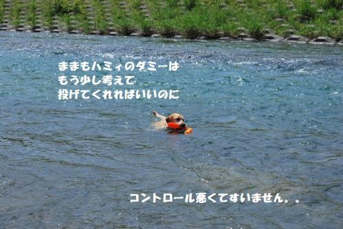DSC_2873.jpg
