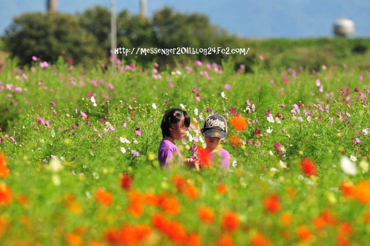 035_20121008145452.jpg