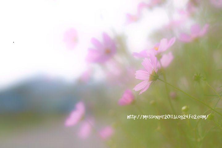 049_20120924153801.jpg