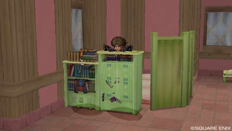 家具と同化するフレ