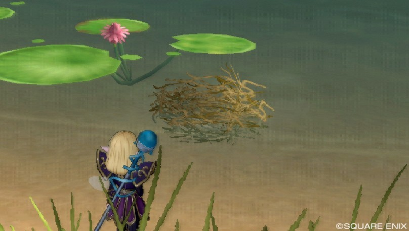 水に浮かぶ巣