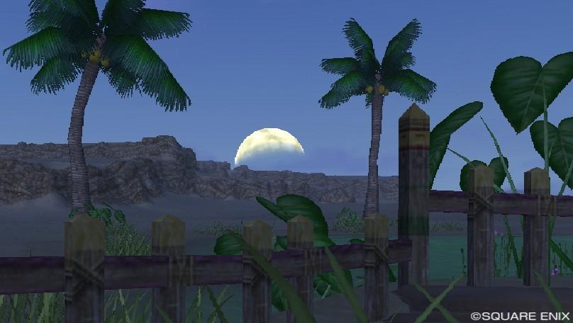 月夜(ゴブル砂漠東)